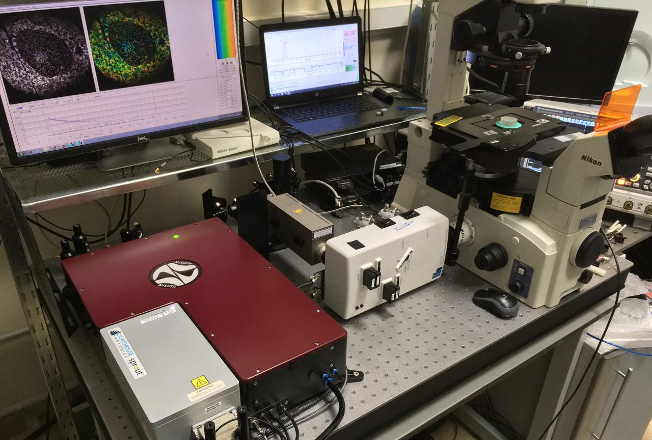Установка для FLIM-микроскопии с фемтосекундным перестраиваемым лазером TiF-100ST-F6